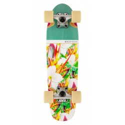BODY GLOVE CRUISER PARADISE 24 x 6.5""