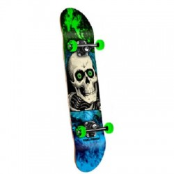2019 POWELL PERALTA GREEN/BLUE RIPPER SKATES COMPLETI